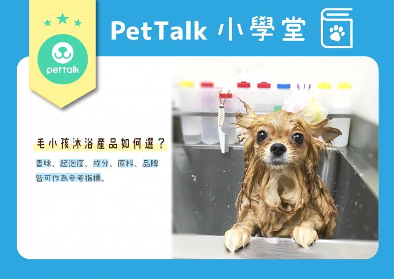 【PETTALK小學堂】淺談各類洗毛精挑選