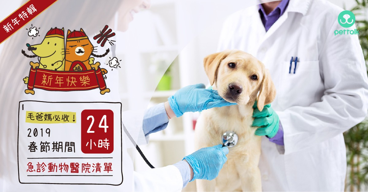 【毛爸媽必收】2019春節期間24H及急診動物醫院清單∣PetTalk愛寵團隊