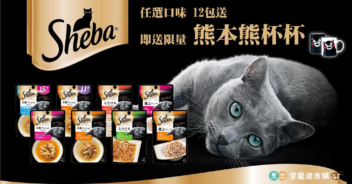PetTalk愛寵健康購|夏季貓咪食慾不振好幫手