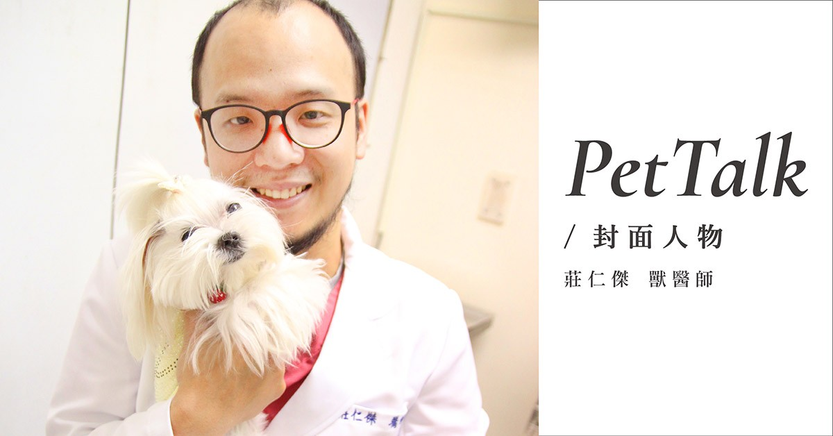 老年犬貓關節照護守則|專業獸醫師—莊仁傑醫師