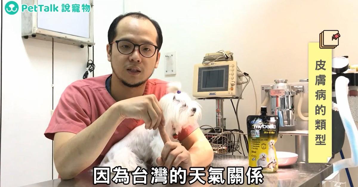 季節交替讓毛孩「毛」起來癢嗎?常見皮膚病的介紹與保養|PetTalk愛寵醫師影片團