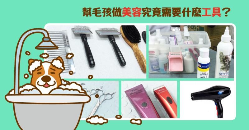 【PETTALK愛寵美容學堂】頂尖寵物美容師專用秘密武器大公開