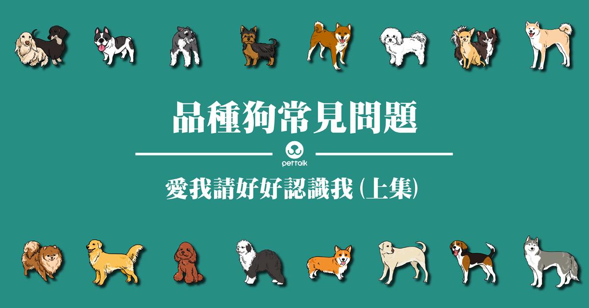 想帶我回家,請先認識我:品種狗常見問題(上)
