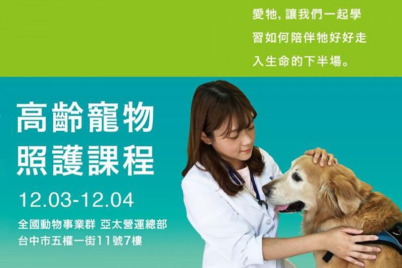 高齡寵物照護課程
